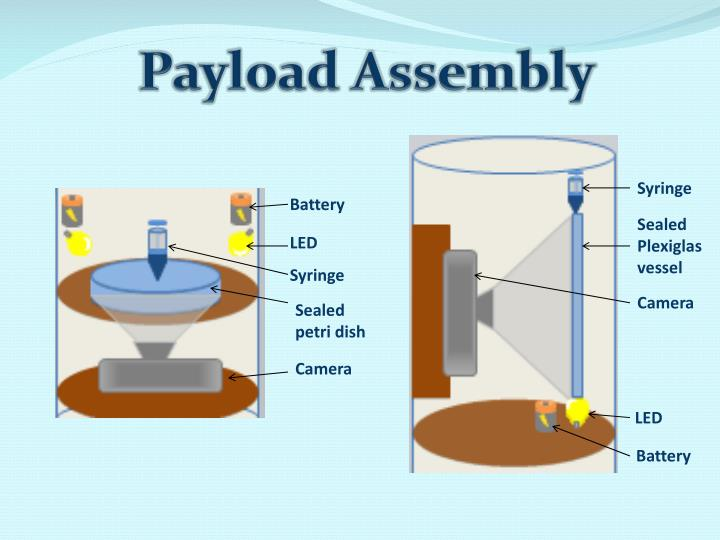 Payload Assembly