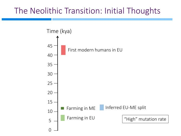 The Neolithic Transition: Initial Thoughts