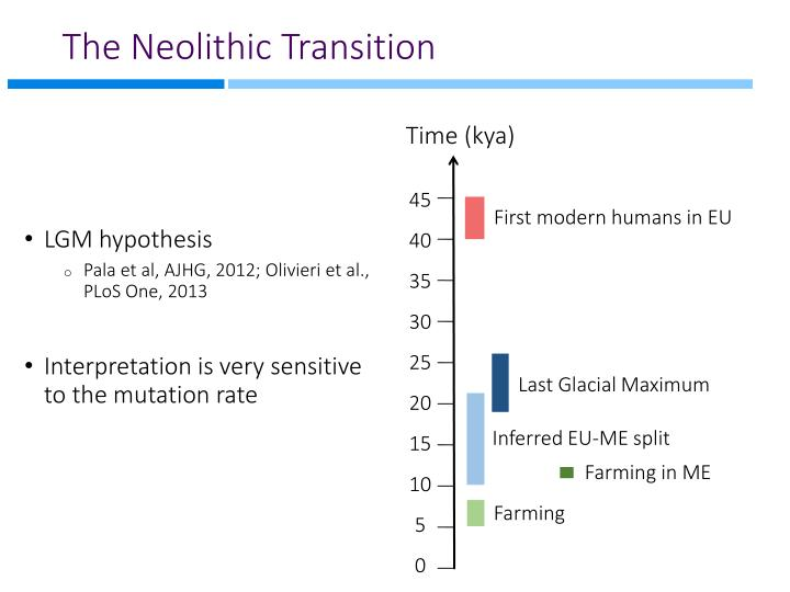 The Neolithic Transition