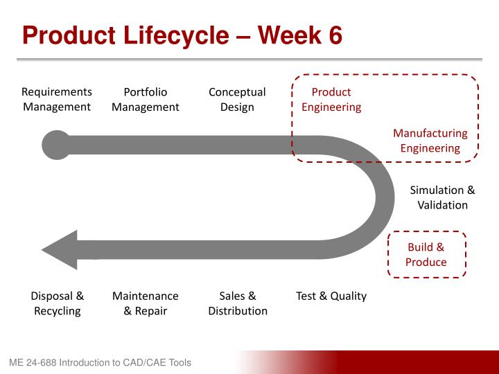 Product Lifecycle – Week 6