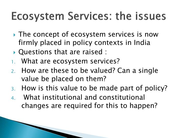 Ecosystem services the issues