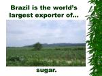 brazil is the world s largest exporter of
