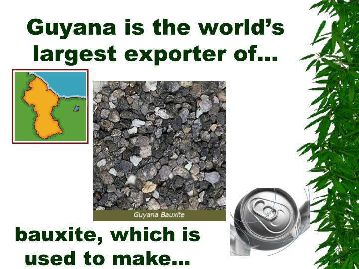Guyana is the world's largest exporter of…