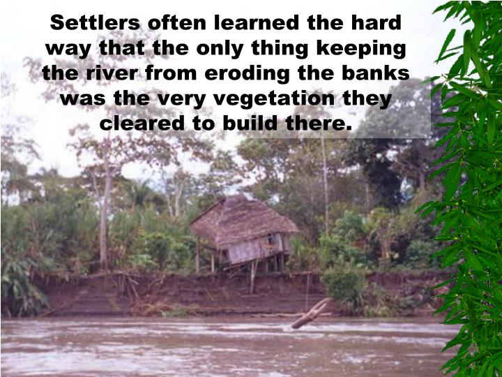 Settlers often learned the hard way that the only thing keeping the river from eroding the banks was the very vegetation they cleared to build there.