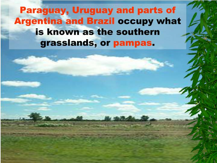 Paraguay, Uruguay and parts of Argentina and Brazil
