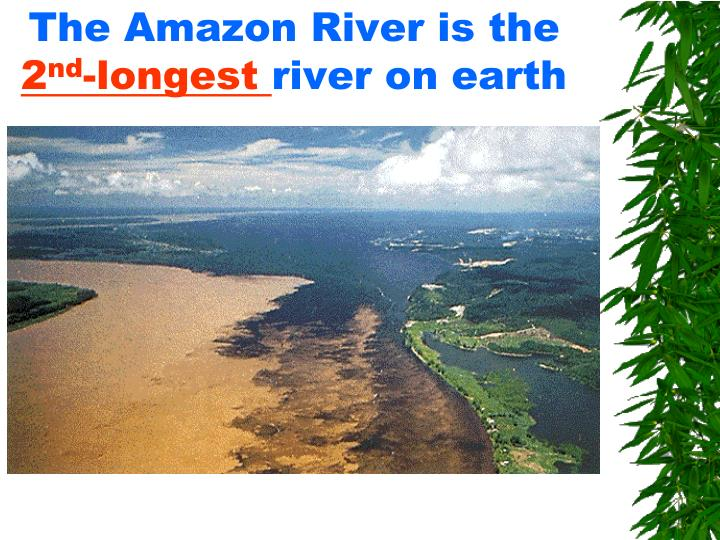 The Amazon River is the