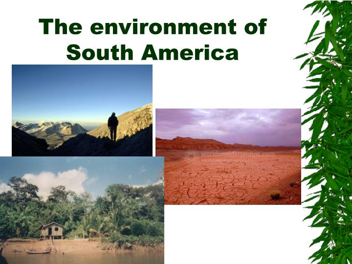 The environment of South America