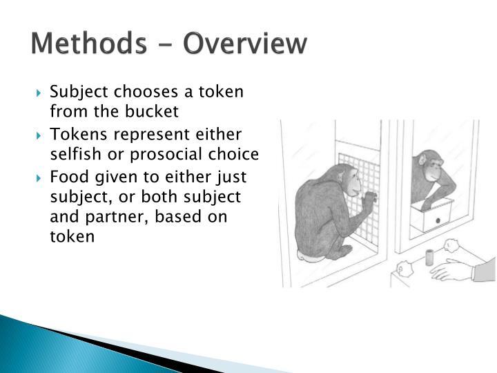 Methods - Overview