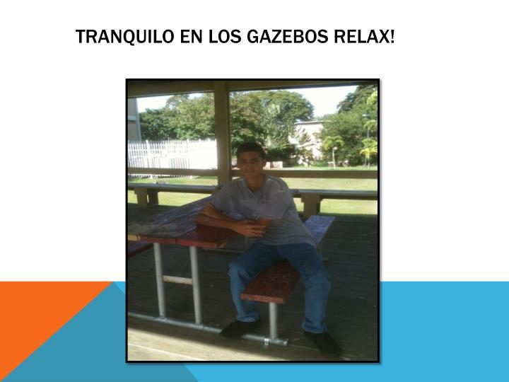 Tranquilo en Los gazebos relax!