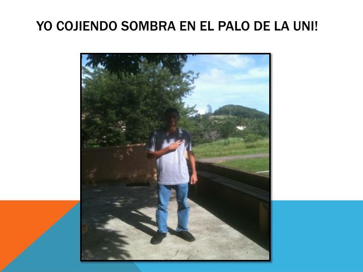 Yo Cojiendo Sombra En El Palo De La Uni!