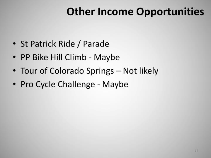 Other Income Opportunities