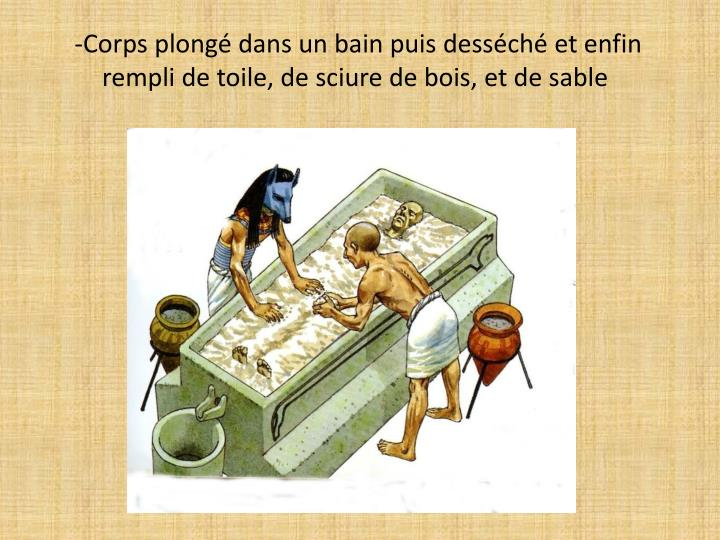 Ppt la momification et la mise au tombeau en egypte antique powerpoint presentation id 2149486 for Photo dans un bain