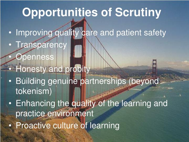 Opportunities of Scrutiny