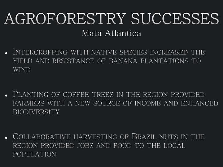 Agroforestry successes