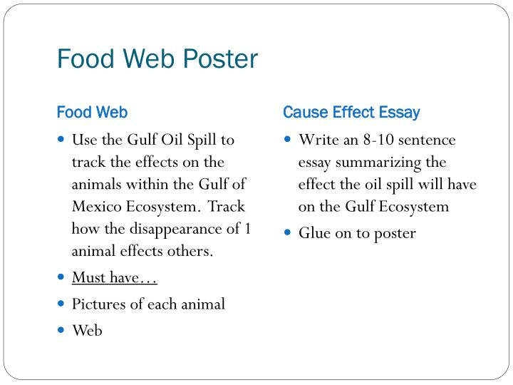 Food Web Poster