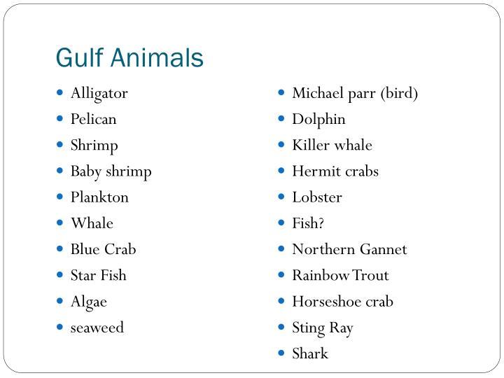 Gulf Animals