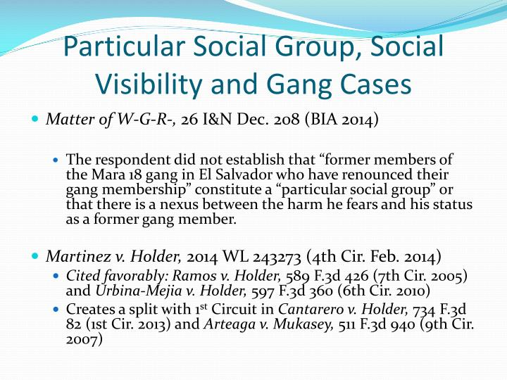 Particular Social Group, Social Visibility and Gang Cases