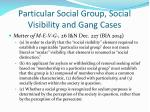 particular social group social visibility and gang cases1