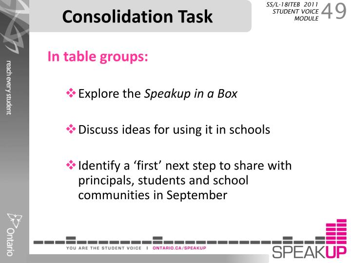 Consolidation Task