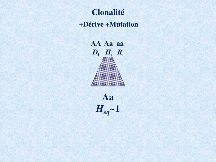 Clonalité