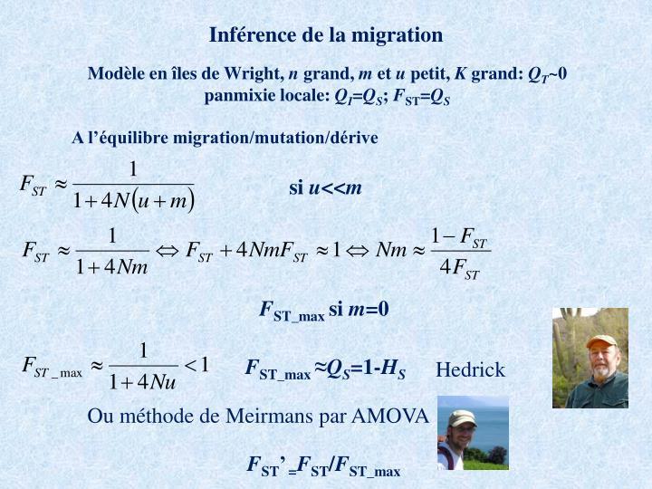 Inférence de la migration