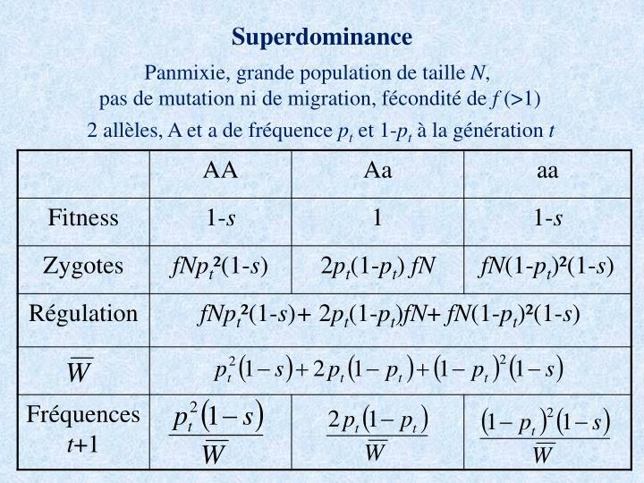 Superdominance