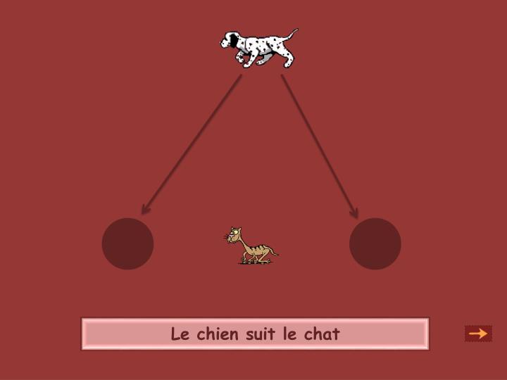Le chien suit le chat