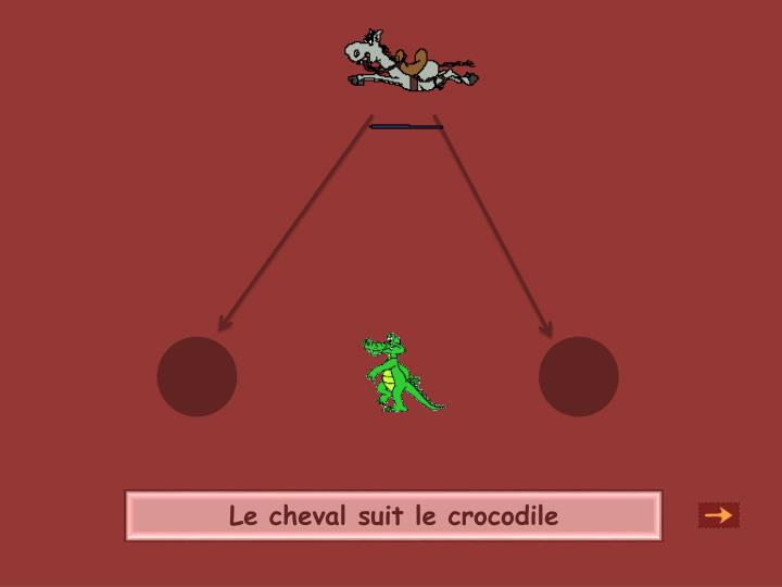 Le cheval suit le crocodile