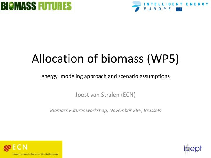 Allocation of biomass wp5 energy modeling approach and scenario assumptions