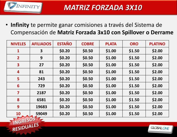 MATRIZ FORZADA 3X10
