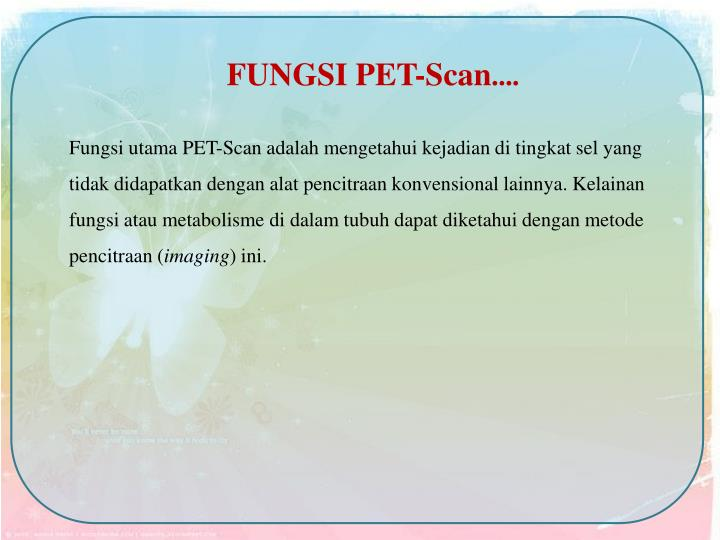 FUNGSI PET-Scan