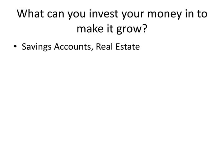 What can you invest your money in to make it grow?