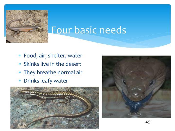 Four basic needs
