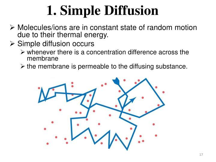 1. Simple Diffusion