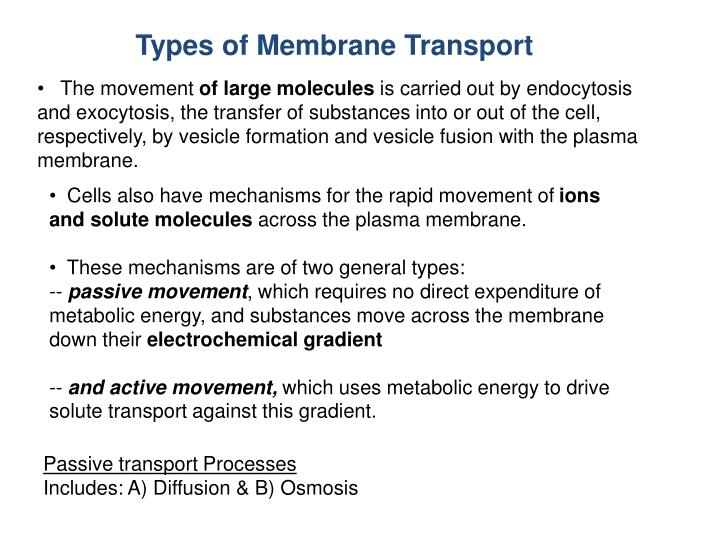 Types of Membrane Transport