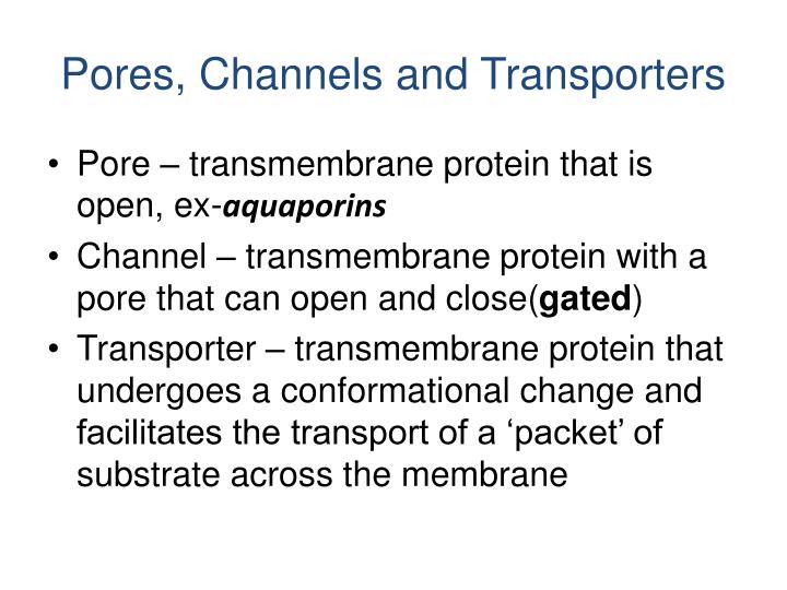 Pores, Channels and Transporters