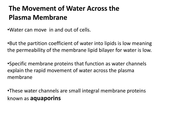 The Movement of Water Across the Plasma Membrane