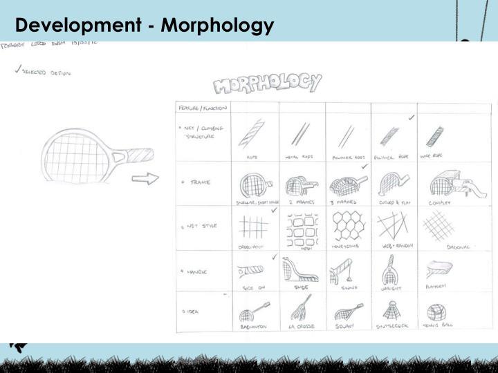 Development - Morphology