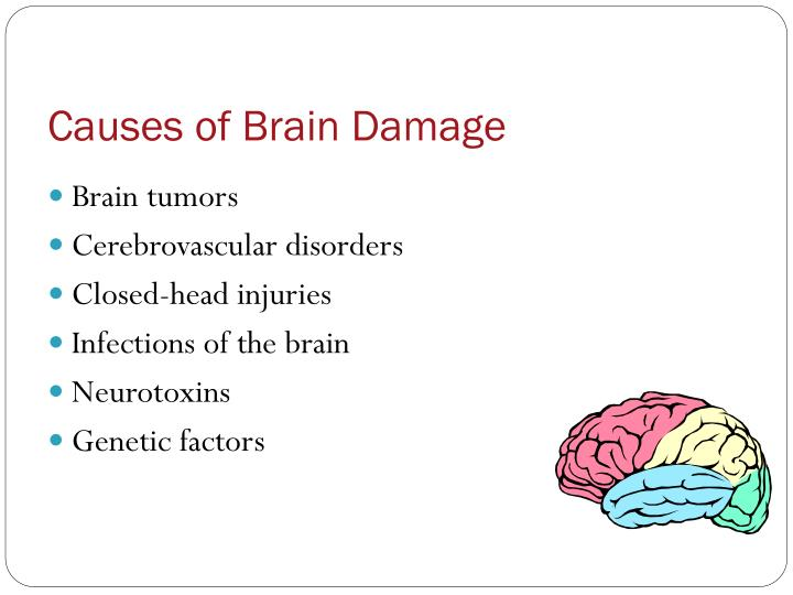 Causes of brain damage