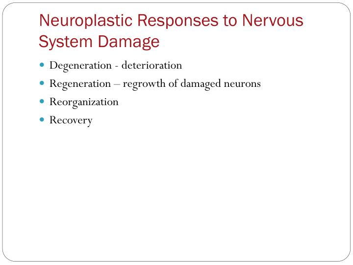 Neuroplastic Responses to Nervous System Damage