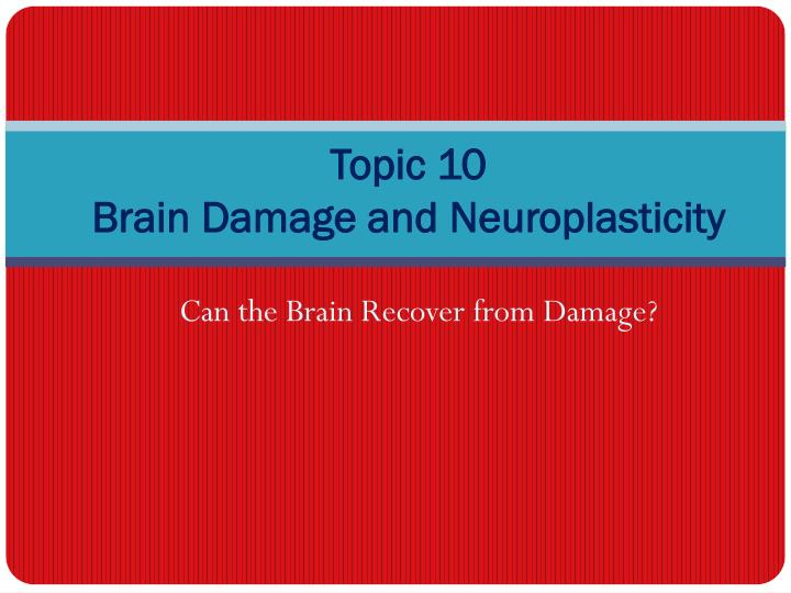Topic 10 brain damage and neuroplasticity
