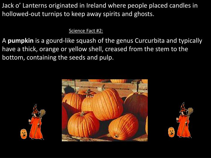 Jack o' Lanterns originated in Ireland where people placed candles in hollowed-out turnips to keep...