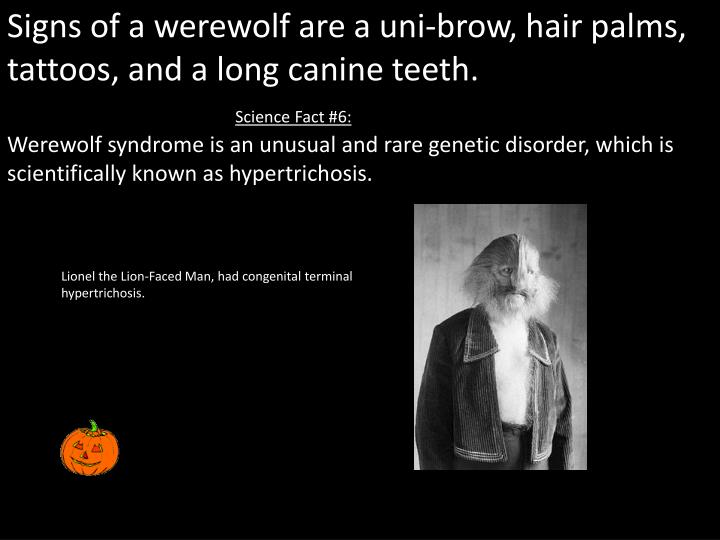 Signs of a werewolf are a