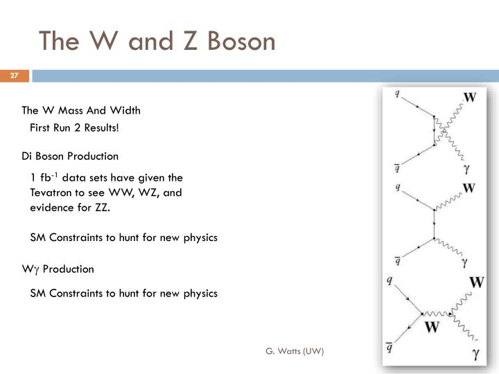 The W and Z Boson