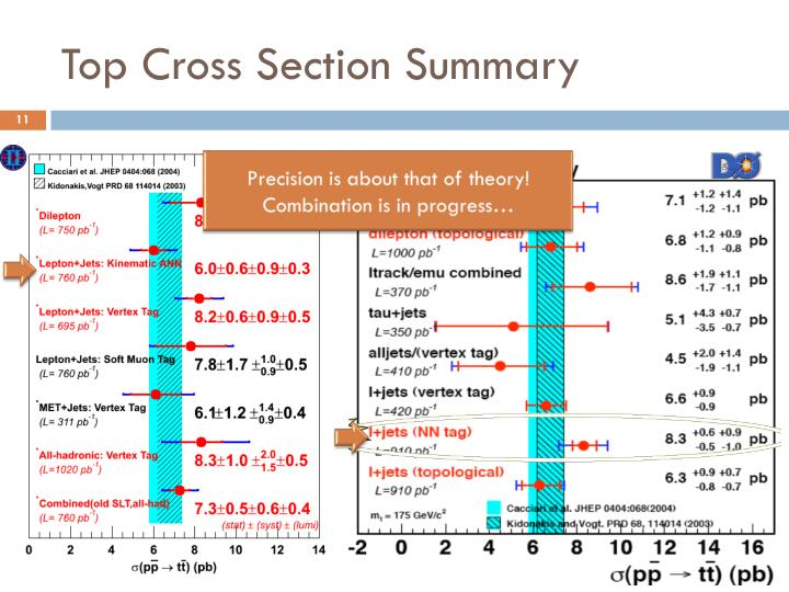 Top Cross Section Summary
