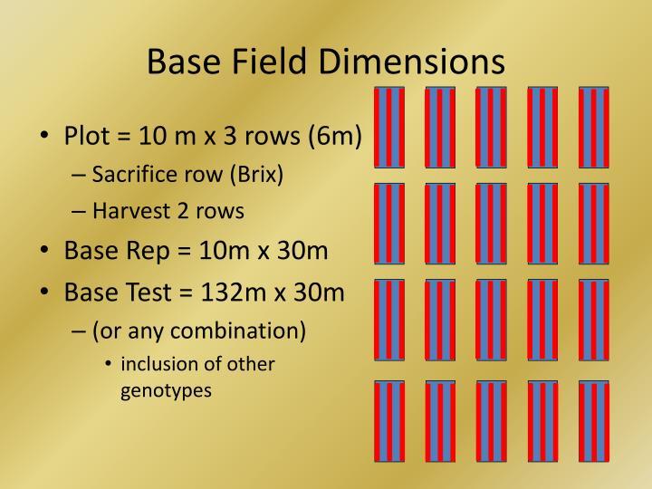 Base Field Dimensions