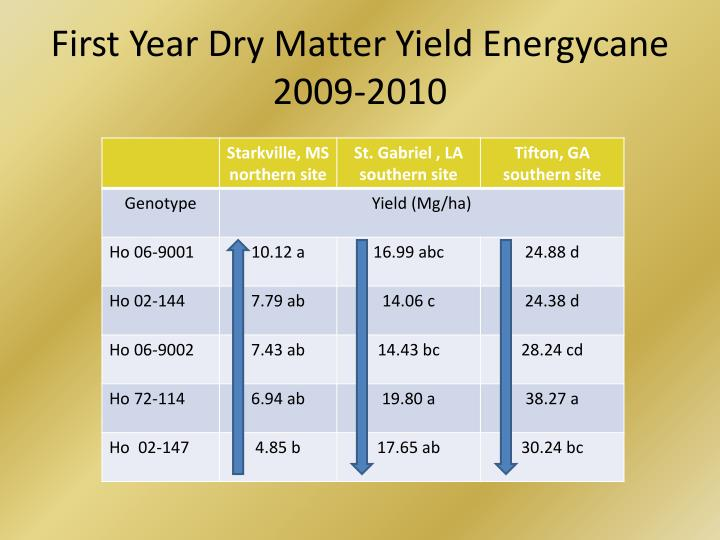 First Year Dry Matter Yield