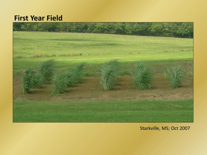 First Year Field