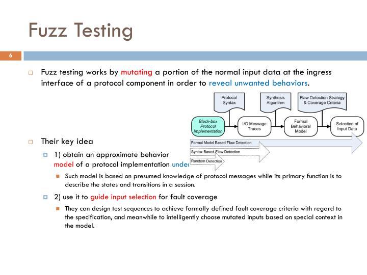 Fuzz Testing