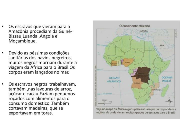 Os escravos que vieram para a Amazônia procediam da Guiné-Bissau,Luanda ,Angola e Moçambique.
